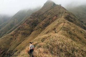 Cánh đồng lau Bình Liêu: Thiên đường cho kẻ mê chụp choẹt