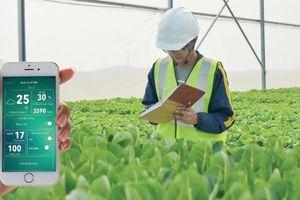 Phát triển nông nghiệp bền vững theo phương châm 'tạo ra nhiều hơn từ ít hơn'