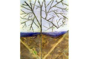 Nữ họa sĩ xứ Ðoài và thông điệp bảo vệ môi trường