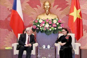 Quan hệ hữu nghị và hợp tác truyền thống Việt Nam-Séc đang phát triển mạnh mẽ