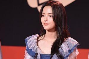 'Mỹ nhân đẹp nhất Trung Quốc' bị chê khi mặc áo rẻ tiền trên thảm đỏ
