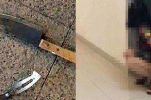 Chung cư giữa Thủ đô: Từ dao, thớt, vật thể lạ 'bay' xuống sảnh đến... tè bậy trong thang máy