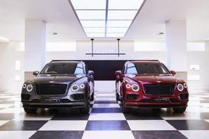Bentley vén màn 2 phiên bản đặc biệt 'Doanh nhân' và 'Thợ săn'