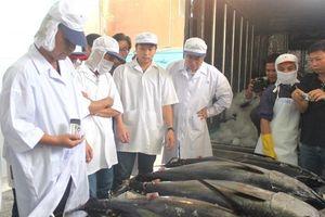 Chuỗi cá ngừ còn điểm nghẽn