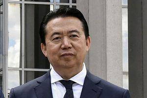 Vợ cựu chủ tịch Mạnh Hoành Vĩ kiện Interpol