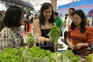 Đặc sản Đà Lạt 'đổ bộ' vào chuỗi kinh doanh của siêu thị Aeon
