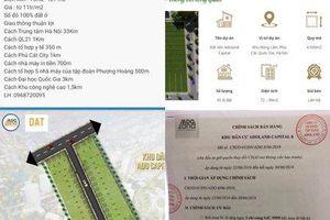 Quốc Oai: Công ty Adoland tự 'vẽ' đất trồng cây như một dự án để rao bán?
