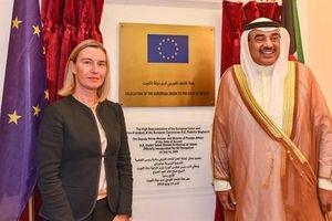EU hứa tăng cường can dự Trung Đông: Không đáng kể...