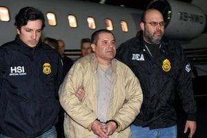 Phía sau bản án xét xử 'trùm ma túy khét tiếng' El Chapo