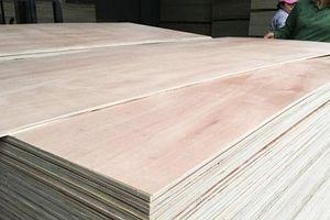 Sẽ quản chặt xuất xứ hàng hóa với mặt hàng gỗ
