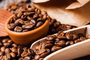 Giá cà phê hôm nay 27/7: Đi ngang sau hai phiên giảm liên tiếp