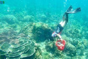 Người đàn ông 8 năm lặn biển nhặt rác ở Sơn Trà