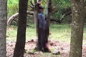 Tá hỏa phát hiện thi thể người đàn ông treo cổ tại vườn cây sau khách sạn