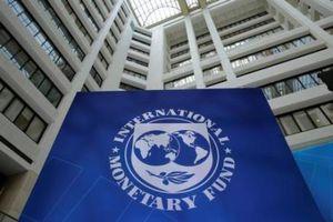 EU bầu chọn ứng cử viên Tổng giám đốc IMF