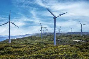 Thu hồi dự án nhà máy điện gió Hàn Quốc - Trà Vinh hơn 247 triệu USD