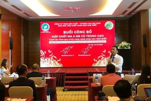 Phát hiện gạo hữu cơ ở Quảng Trị có hợp chất quý hơn vàng