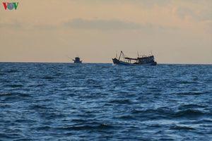Khẩn trương tìm kiếm 4 ngư dân mất tích trên biển Cà Mau