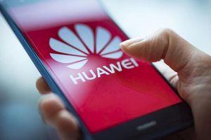 Điện thoại chạy HongMeng OS ra mắt trong tuần này