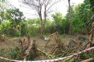 Người đàn ông ở Quảng Nam chết thảm sau khi cưa quả nổ