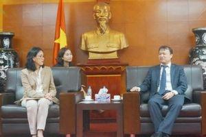 Bún, phở là mặt hàng tiêu biểu cho Tuần hàng Việt Nam ở Thái Lan