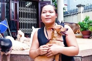 Cô gái tuyên bố không sinh con để có thời gian chăm sóc chó hoang gây tranh cãi