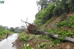 Hồ thủy điện Đăk Nông an toàn nhưng chưa có phương án khắc phục sạt lở
