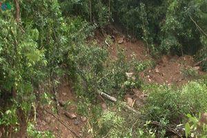 Hình ảnh đường dẫn vào hồ đập thủy điện sạt lở do mưa lũ ở Đắc Nông