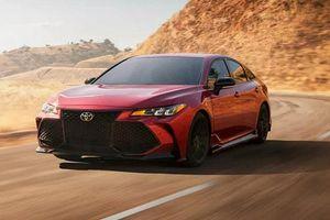 Sedan cỡ lớn Toyota Avalon TRD bán ra từ 1 tỷ đồng