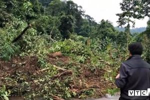 Sạt lở gần thủy điện ở Đắk Nông: Yêu cầu hơn 10 hộ dân di dời