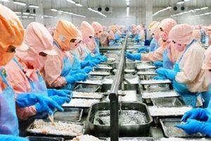 Lợi nhuận của Thủy sản Minh Phú trong quý II giảm mạnh