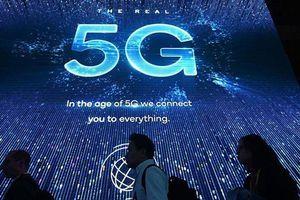 Cấp phép thương mại cho 5G trong năm 2020
