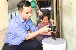 Dự án thí điểm thả muỗi vằn Wolbachia tại xã vĩnh lương: Giảm lây truyền bệnh sốt xuất huyết