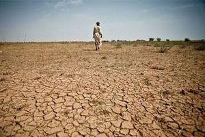 El Nino 2019: Gây nắng nóng và hạn hán khắc nghiệt trên thế giới