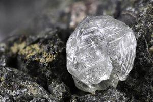 Ngồi dưới gốc cây xem youtube, đột nhiên nhặt được... kim cương