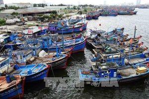 Đà Nẵng: Gần 1.450 tỷ đồng cải thiện môi trường nước