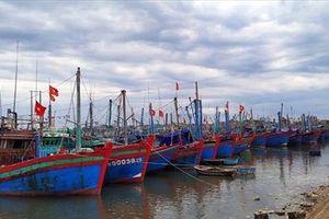 Thanh Hóa: Hơn 3.800 tàu cá đang hoạt động trên biển dù bão tới gần