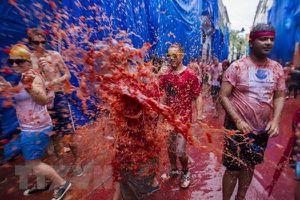 Tưng bừng lễ hội ném cà chua ở Tây Ban Nha