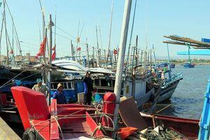 'Dính' hạn ngạch, hơn 700 tàu cá Phú Yên phải chuyển đổi nghề