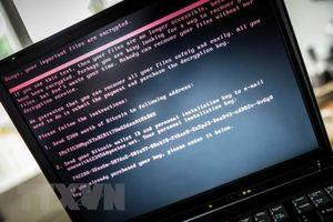 Chặn đứng âm mưu tấn công mạng đối với hơn 850.000 máy tính trên thế giới