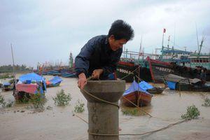 Bão số 4 hướng thẳng Bắc Trung Bộ: 3 tàu thuyền Thanh Hóa mất liên lạc