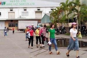 Hải Phòng trả tiền hoàn thuế cho công nhân Công ty KaiYang Việt Nam
