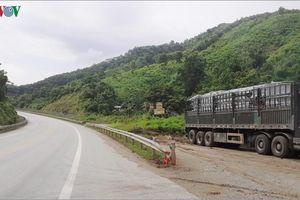 Cao tốc Hà Nội - Lào Cai nổi lên nhiều bất cập về an toàn giao thông