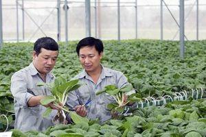 EVFTA mở ra tiềm năng lớn đối với nông nghiệp hữu cơ