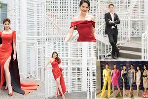 Thí sinh và giám khảo Hoa hậu Hoàn vũ đua nhau khoe sắc
