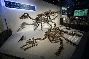 Tìm thấy hóa thạch loài khủng long mới nặng tới 5,3 tấn