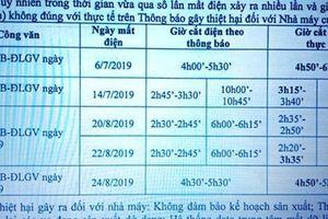 Thông báo một đằng cắt điện một nẻo, giám đốc điện lực ở Ninh Bình bị đình chỉ công tác