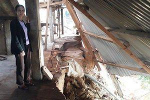 Cận cảnh những ngôi nhà trực chờ bị 'hà bá' nuốt chửng