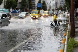 Siêu bão Faxai đổ bộ Nhật Bản, giao thông nhiều nơi tê liệt