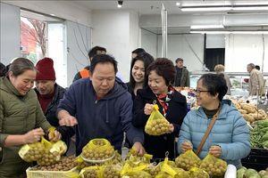 Tưng bừng Ngày Nhãn tươi Việt Nam tại Australia