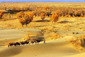 Khám phá sa mạc được mệnh danh là 'nơi đi không kỳ trở lại'